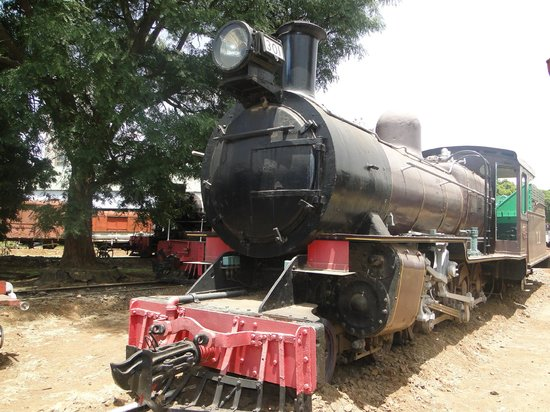 Railway Museum:                   Another view of 301