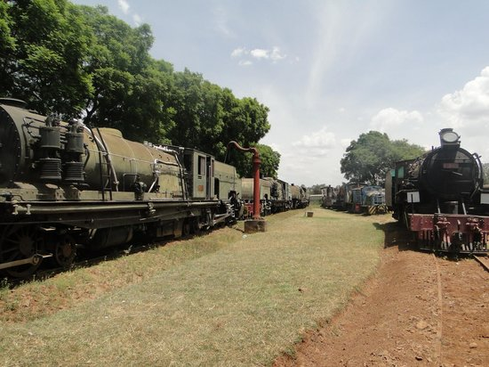 Railway Museum:                   A view of the yard