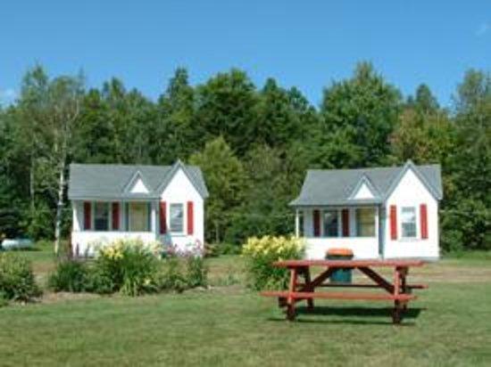 Mount Jefferson View: Cabins