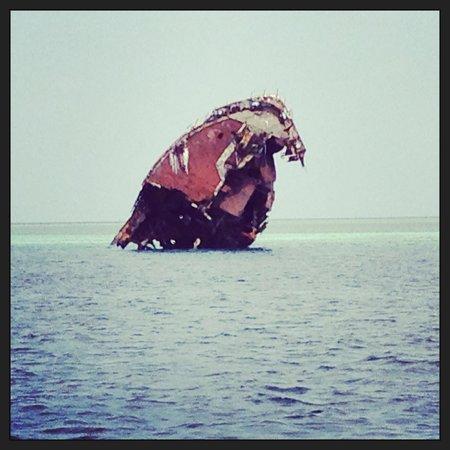 كوريدو آيلاند ريزورت:                                     Épave de bateau visitée en snorkeling                     