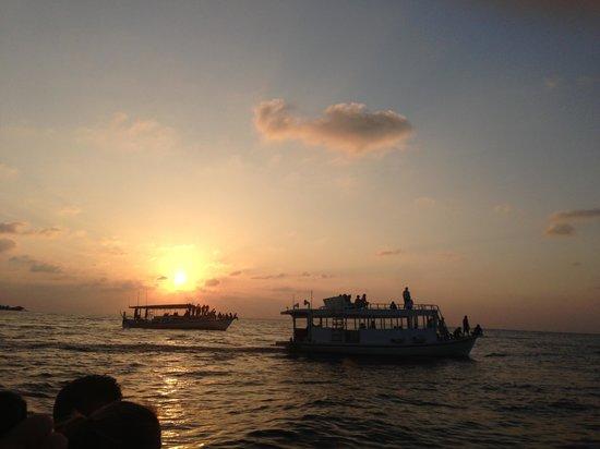 Kuredu Island Resort & Spa :                                     Croisière couchée de soleil