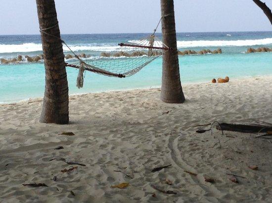 Kuredu Island Resort & Spa:                                     .