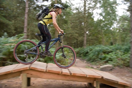 Mountain Bike Skills Loop Picture Of Sherwood Pines Forest Park