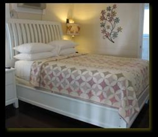 Duval Gardens Key West Florida BB Reviews Photos Price