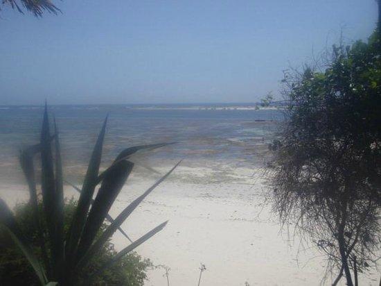 Baobab Beach Resort & Spa:                   Beach view
