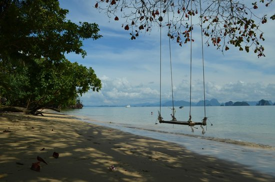 Koyao Island Resort:                                     beach