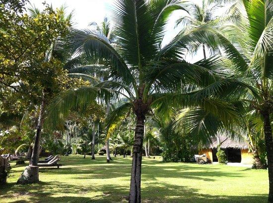 Germing Frey, Hotels & Resorts:                                     le jardin