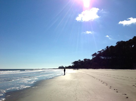 Hunting Island State Park:                   The beautiful beach