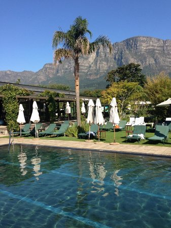 Vineyard Hotel:                   Ealy morning at the pool