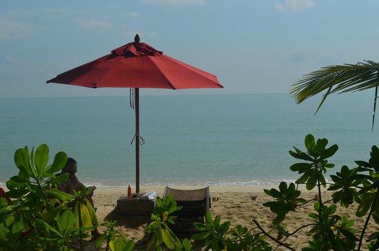 Anantara Rasananda Koh Phangan Villas:                   vue de la chambre
