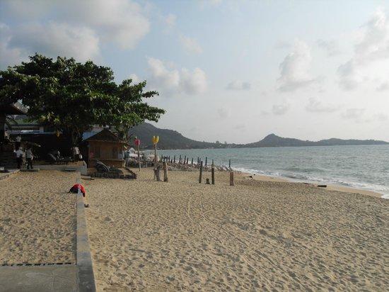 لاماي وانتا بيتش ريزورت:                   lamai beach                 