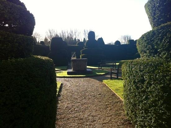 Billesley Manor Hotel:                   topiary gardens