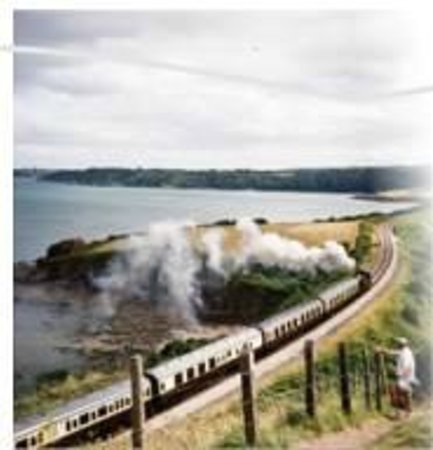 Benbows Guest House: Steam Train Paignton to Dartmouth, local attraction