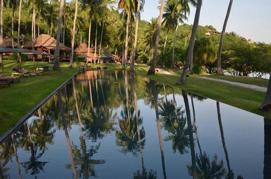 Haadtien Beach Resort:                                     la piscine