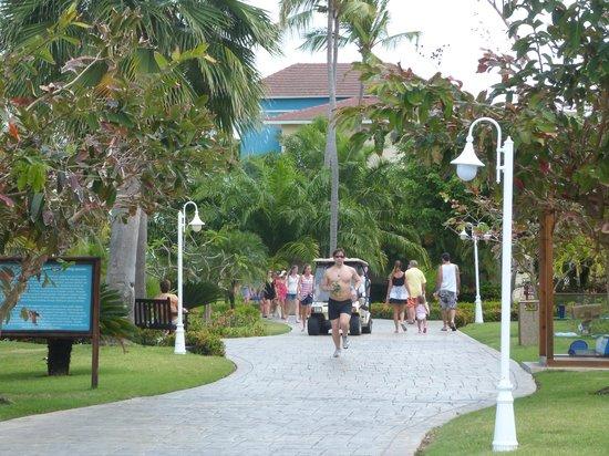Ocean Blue & Sand:                   los alrededores dentro del hotel