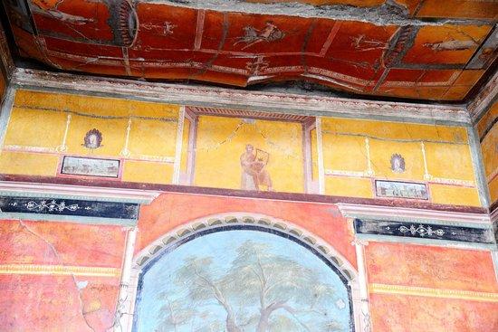 Oplonti Villa di Poppea Ruins:                   interni