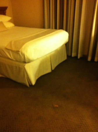 Union Club Hotel:                   lots of stains on carpeting