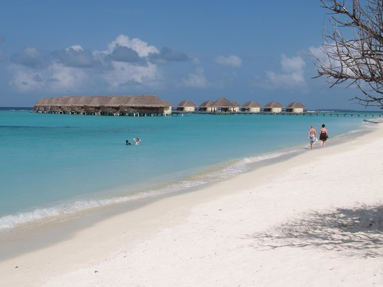 Kanuhura - Maldives:                   A busy day on the beach