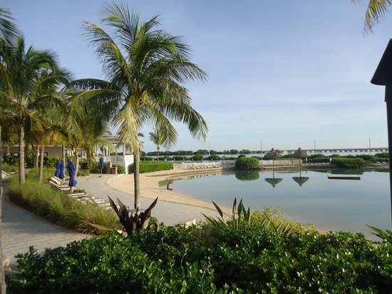 Hawks Cay Resort:                   Saltwater lagon