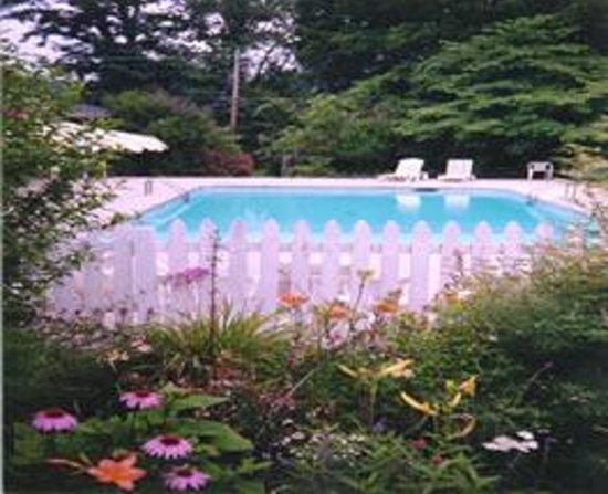 Rosewood Inn: Pool
