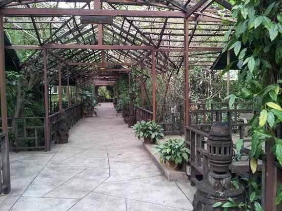 Kaomai Lanna Resort:                   Couloir externe d'accès aux chambres du 1er