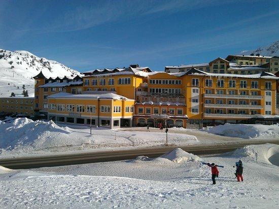 Hotel Steiner:                   The Hotel                 