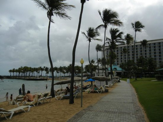 Caribe Hilton San Juan:                   Lagoon beach area
