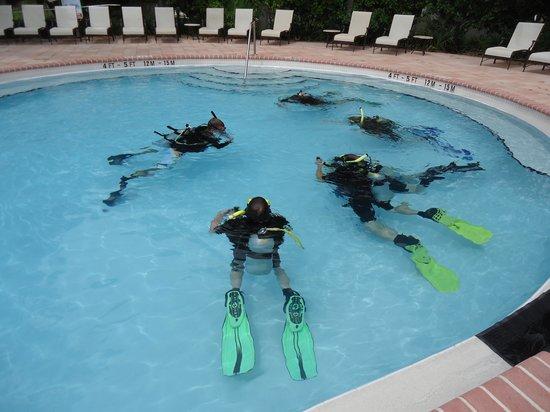 Dive Duck Key 사진