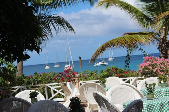 Coco Reef Tobago:                   Terrace