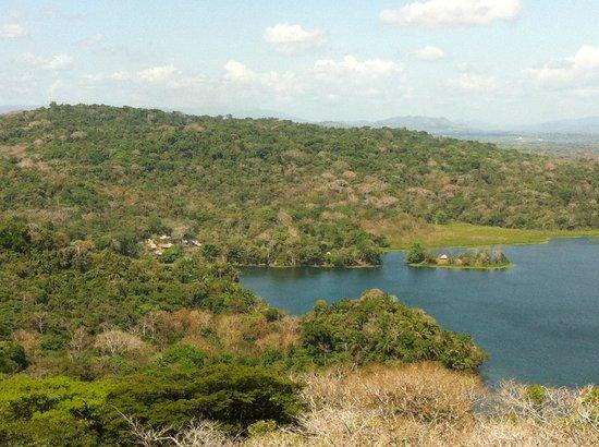 Gamboa Rainforest Resort Aerial Tram Tour :                   Vue du village Emberera et du rio Chagres depuis le tram