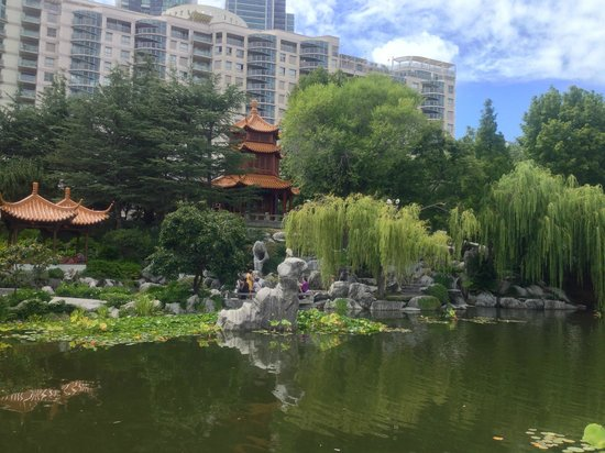 Chinese Garden of Friendship:                   Apartments and offices in the background