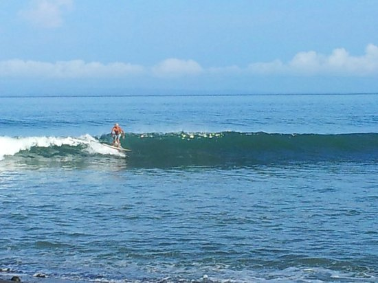 Costa Rica Stand Up Paddle Boarding:                   Wave at Leftover
