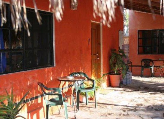 Iguana Inn Photo