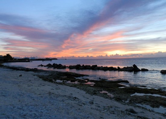 Plaza Resort Bonaire:                                     beach sunset