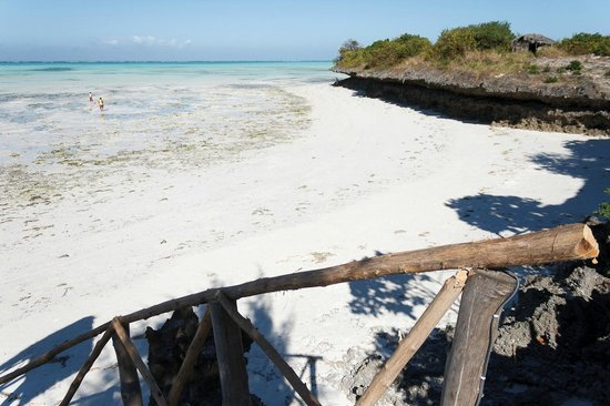 Zanzest Beach Bungalows:                   Vista dal ristorante