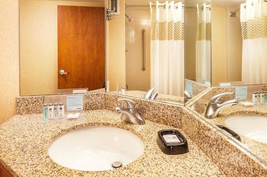 Hampton Inn Hendersonville: Hampton Inn Bathroom