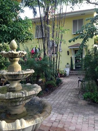Mango Inn Bed and Breakfast:                   courtyard