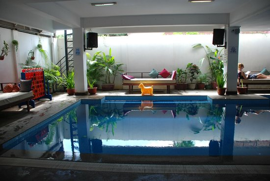 The Siem Reap Hostel:                   Pool - the best!