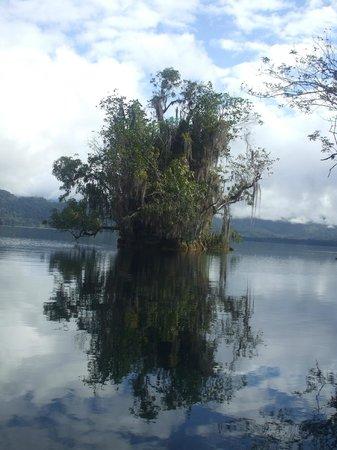 Laguna Miramar :                   3 islas