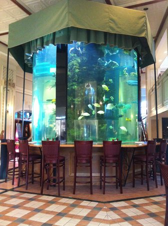Nemacolin Woodlands Resort:                   Fish Tank in Tavern