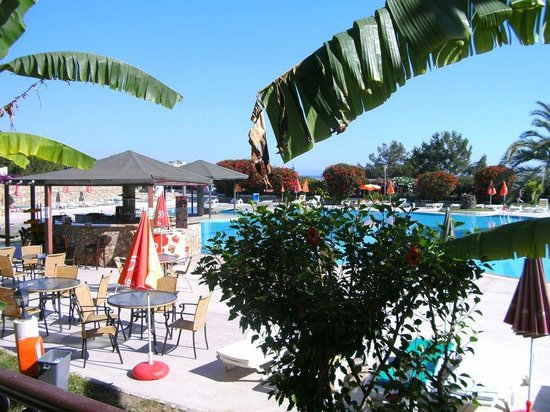 Lapta Holiday Club Hotel:                   The pool area.