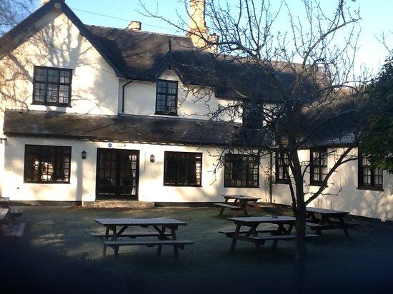 The Wynnstay Arms Hotel : Rear Garden