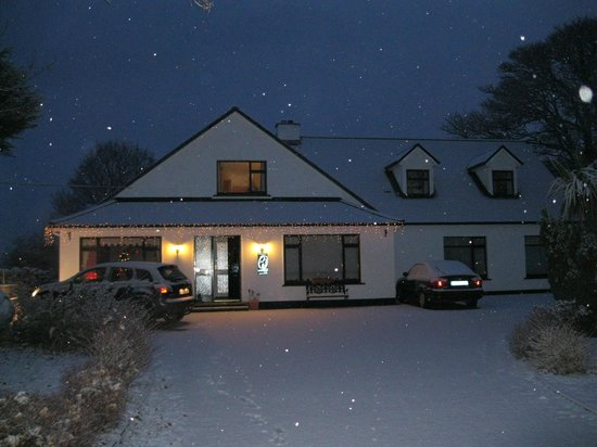 Mountain View Guesthouse: Snow at Mountain View