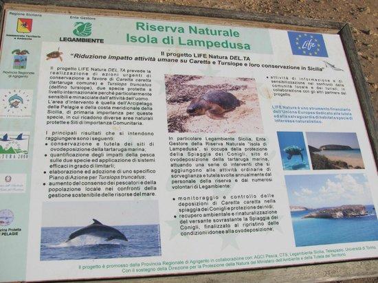 Spiaggia dei Conigli:                   riserva naturale