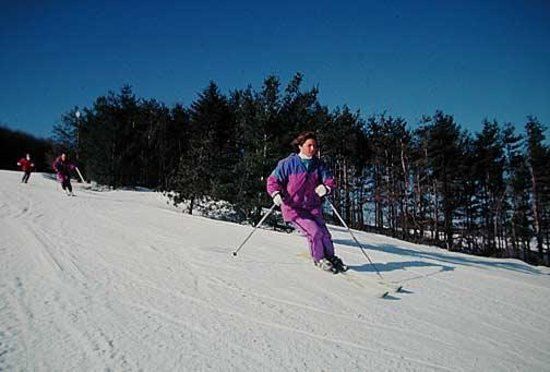 North Glade Inn : Skiing at Wisp
