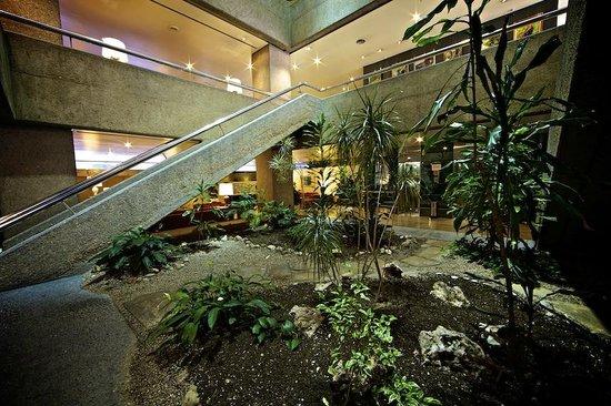 Jardines picture of sercotel apartamentos eurobuilding 2 madrid tripadvisor - Sercotel apartamentos eurobuilding 2 ...
