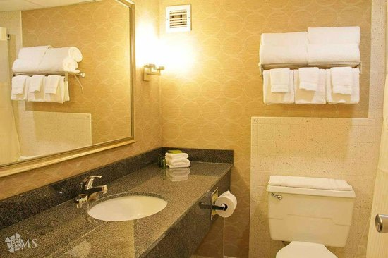 Decatur Conference Center and Hotel: Newly renovated bathroom