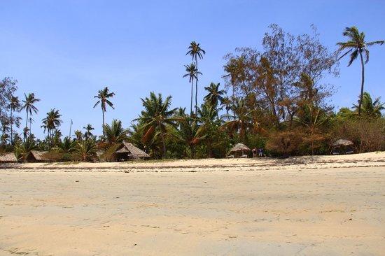 Beach Crab Resort:                   Ushongo Beach