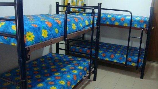 La Posada Chetumal Hostel:                   dorms