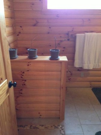 Amish Country Lodging:                   Bathroom